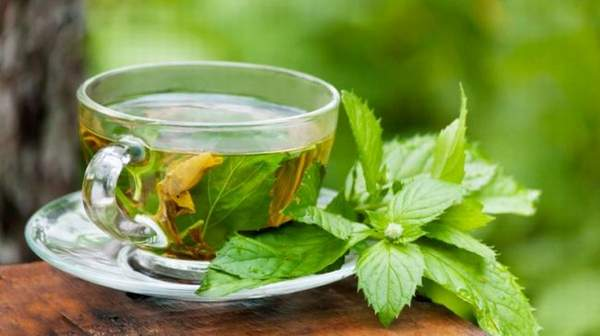 Green Tea Health Benefits & side effects