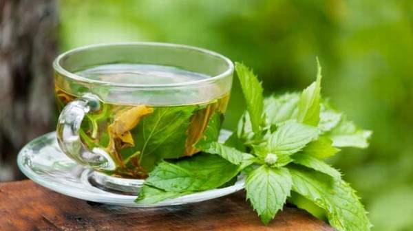Green Tea Health Benefits & side effects