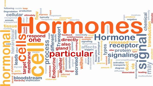 Hormone: Basic Overview